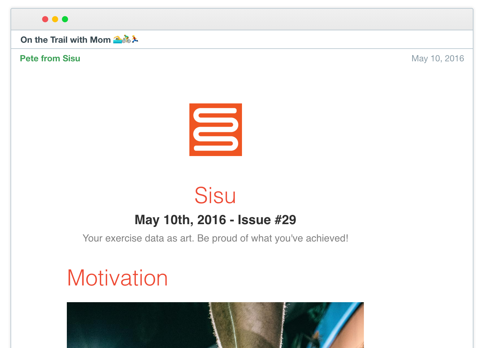Sisu's Email Newsletter Header